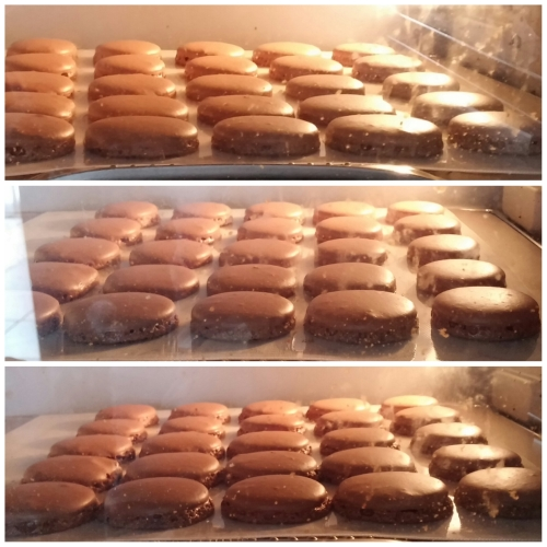 How my macarons rose in my oven. 馬卡龍在焗爐內的狀况。